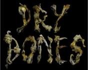 Dry Bones