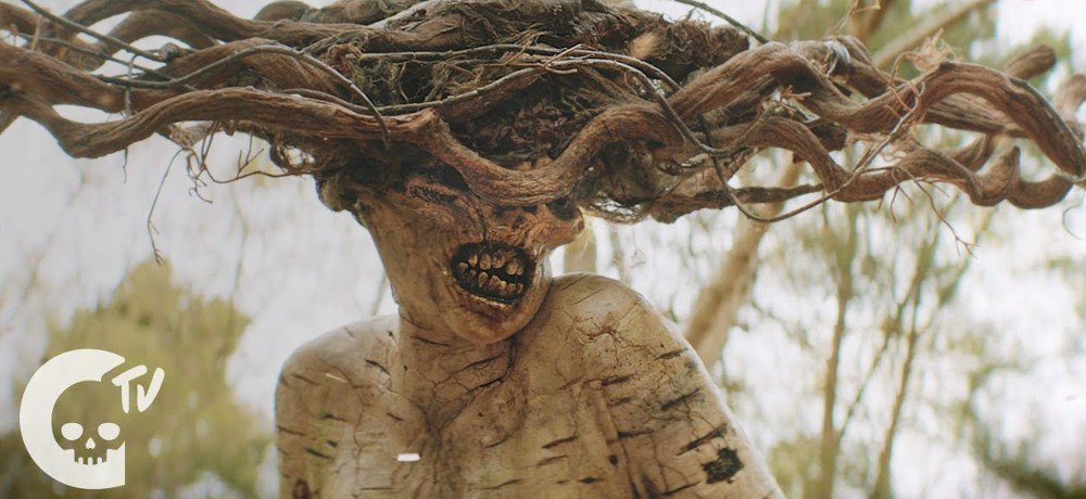 Crypt TV Announces Facebook Watch Series Based on Short Film 'The Birch'