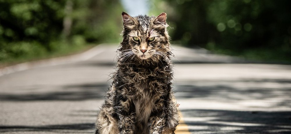 PET SEMATARY (2019) Coming to 4K Ultra HD, Blu-ray, DVD, and VOD on July 9th, Bonus Features Include Alternate Ending