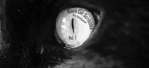 Black Cat Scribbles, Vol 1 – Book Review