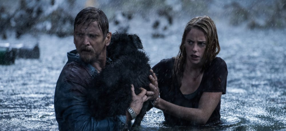 Check Out the First Trailer for 'Crawl'