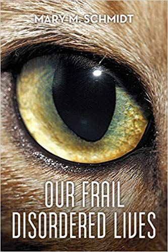 Our Frail Disordered Lives – Book Review
